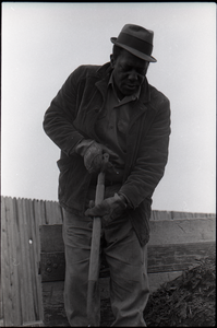 African American man working with a pitchfork