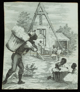 Advertisement for cotton, location unknown, undated