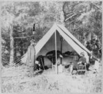 Civil War officer groups in the field, formal groups, camp life and incidents