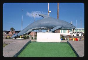 Porpoise, Stewart Beach mini golf, Galveston, Texas