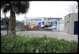 Sativa, 2001