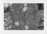 Alexandria Cemeteries Historic District: Brison tombstone