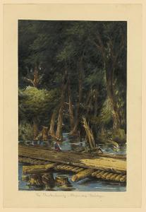 The Chickahominy - Alexanders Bridge