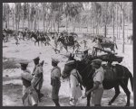 NAACP photographs of views, daily activities, and people from various countries in Africa, South America, and the West Indies