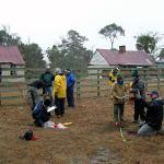Ossabaw Island excavation