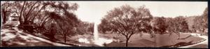Adolphus Busch, Arroyo Garden. Ivy Wall, Pasadena