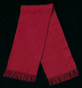 Red wool scarf worn by Joan Mulholland during a protest near the White House