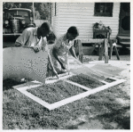 Applying the screen on the inside face of door; Demonstration of home screen door construction; Saint Mary's County, Ridge, Maryland, July 1941