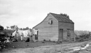 Types of Negro houses in old Jackson Ward