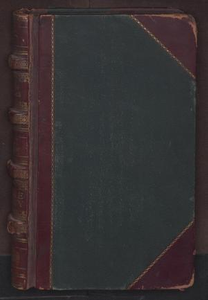 [Cooke county records, 1857-1950] [Record of Fugitives, District Court, Cook County, 1865-1908] Volume 246