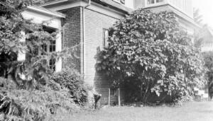 Jackson Davis's house at 3907 Seminary Avenue.