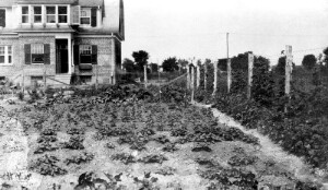 Jackson Davis's house, 3907 Seminary Avenue