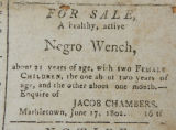 1802-06-23, advertisement for the sale of a 21 year old woman and her two children.