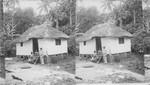 Typical home of native Negro. Bog Walk. Jamaica
