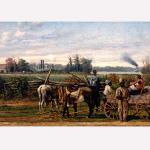 Plantation portrait
