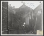 Addams Park (0262) Views - Neighborhood views, 1952-11-17