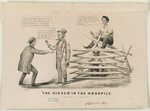 """The nigger"" in the woodpile"