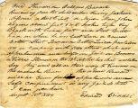 Hayes Misc. Document 18440818, Reward for Runaway