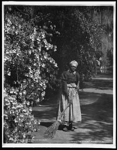 Aunt Phoebe, Magnolia-on-the-Ashley [i.e. Magnolia Gardens], Charleston, S.C.