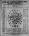 Anti-Slavery Constitutional Amendment Picture