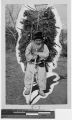 Korean man carrying firewood, Anshu, Korea, ca. 1930-1939